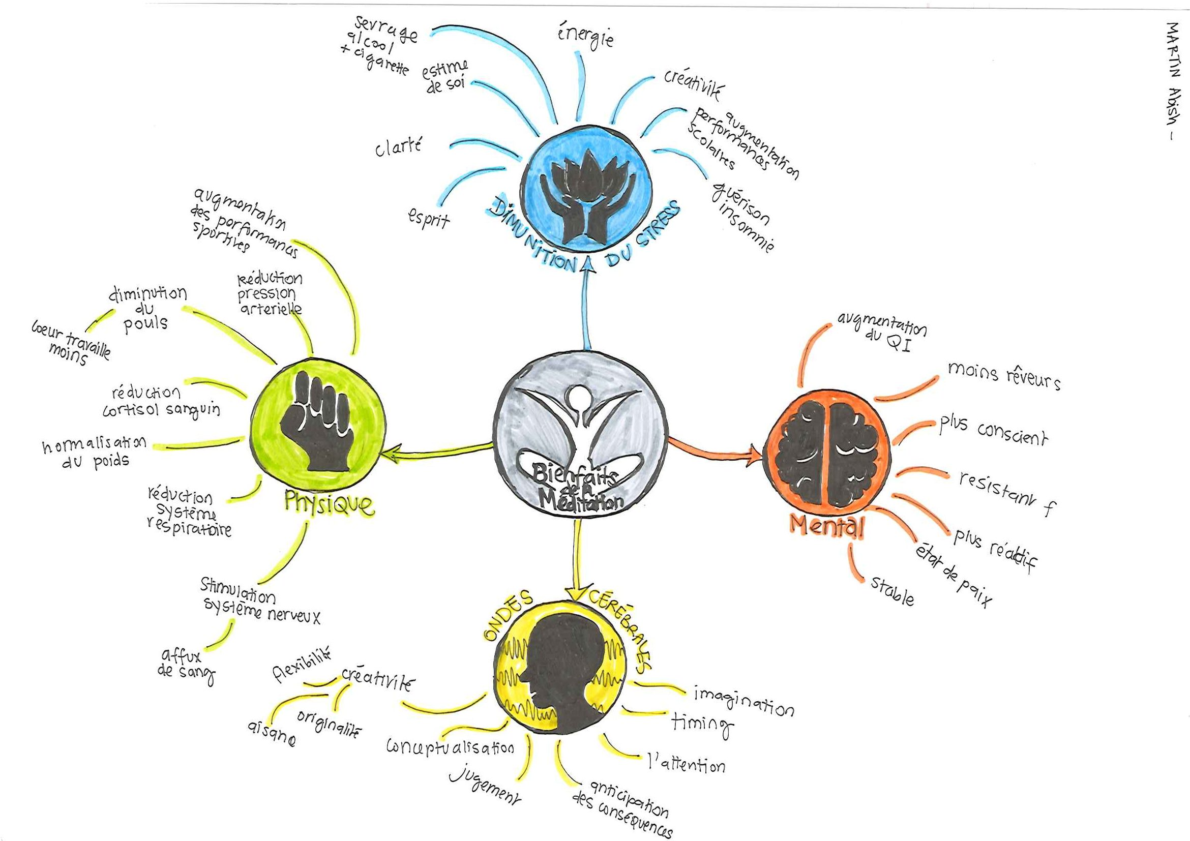 Mind Mapping Etudiant (Meditation)