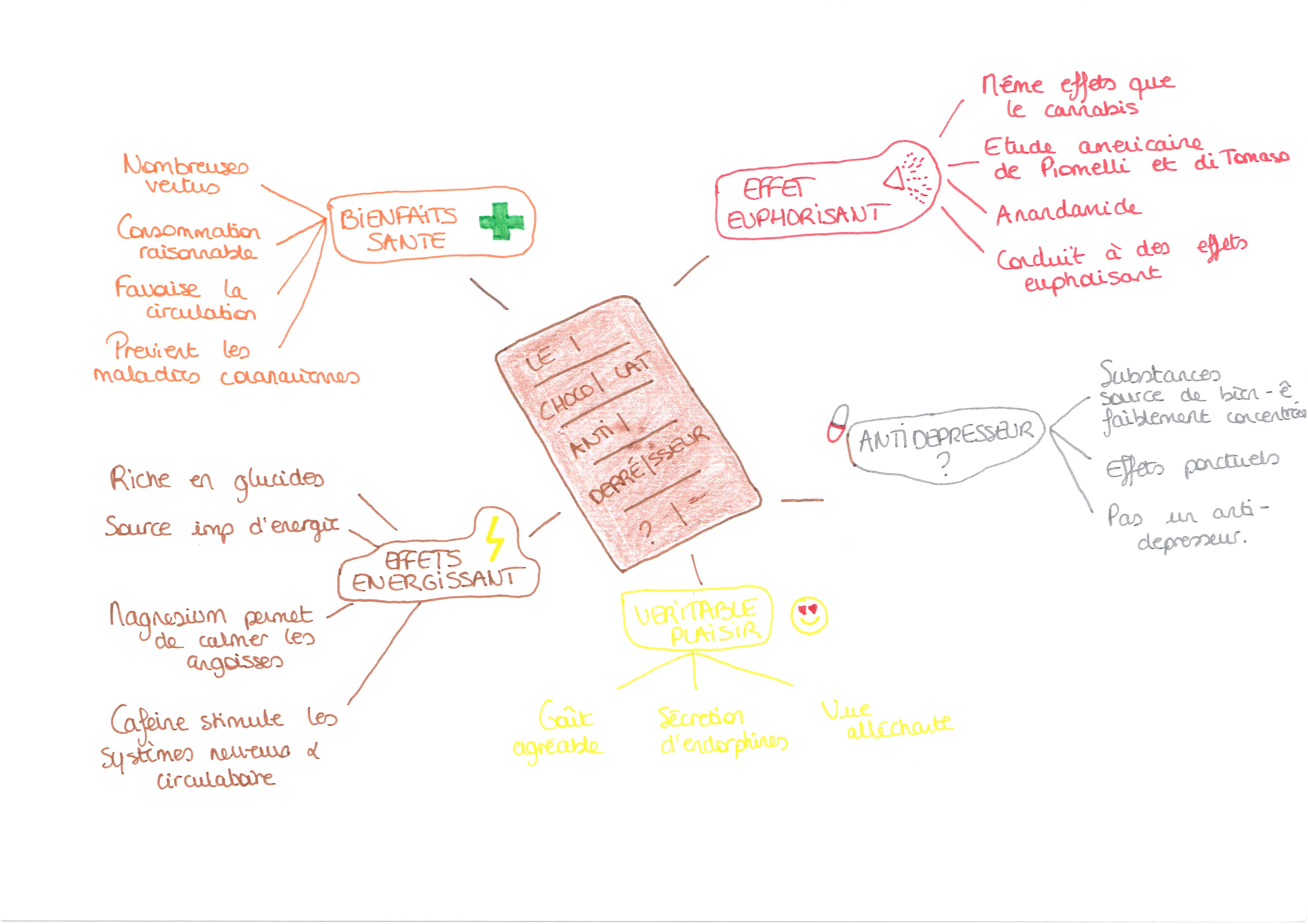 Mind Mapping Etudiant (Le Chocolat)